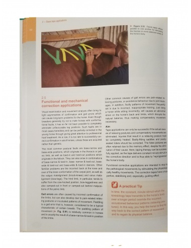 MTC Equine Manual - Page