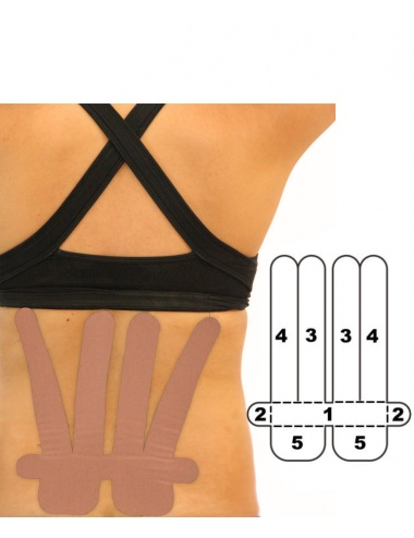 Kindmax Lower Back Support - Beige